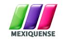 Canal: Tv Mexiquense